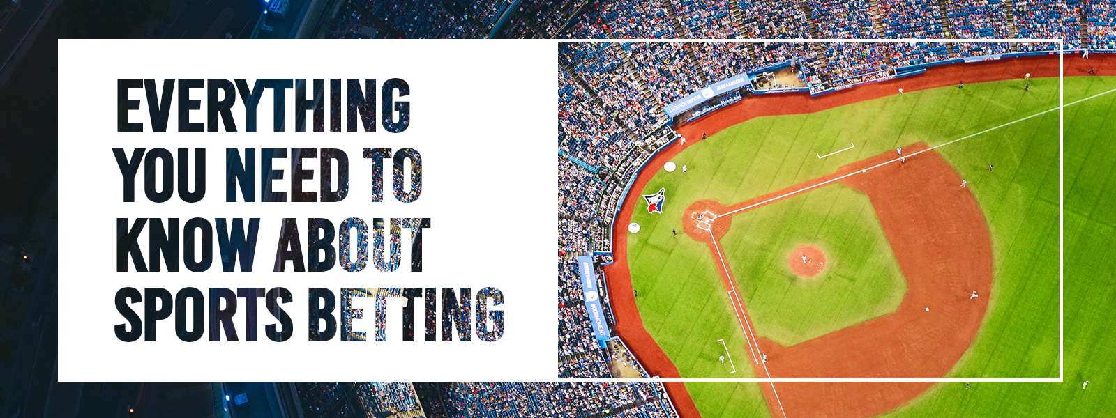 Everything You Need To Know About Sports Betting